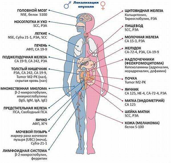 Почему не получился анализ крови на сахар