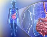 Аденокарцинома желудка или железистый рак желудка