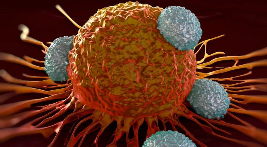 Трижды негативный рак