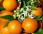 Применение апельсинов для профилактики раковых заболеваний