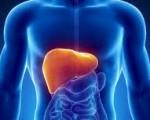 Рак печени — симптомы, причины, прогноз и профилактика