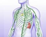 Рак лимфоузлов: симптомы, признаки, причины, прогноз и лечение