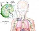 Рак лимфоузлов на шее — причины, симптомы, лечение и прогноз