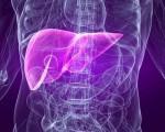 Классификация рака печени