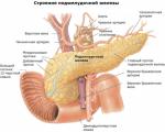 Неоперабельный рак поджелудочной железы