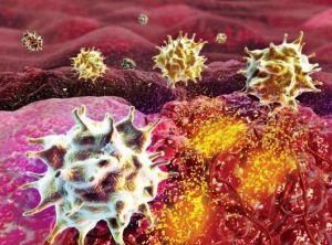 Движующиеся раковые клетки