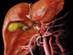 Рак желчного пузыря