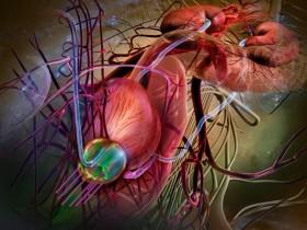 Рак простаты: метостазы в костный мозг