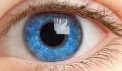 Рак глаза