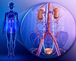 Метастазы при раке почек
