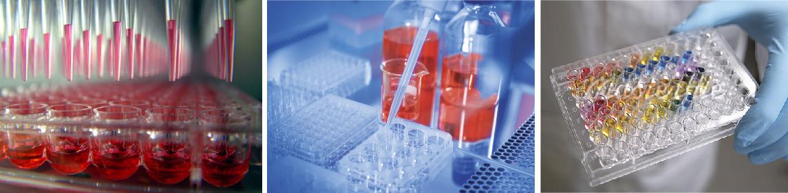 Анализ крови, мочи, анализ крови на онкомаркеры - показывает рак