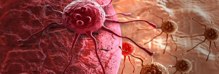 Основные причины развития злокачественных клеток