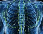 Классификация лимфом