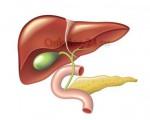 Первые симптомы и проявления, лечение и прогноз жизни при раке желчного пузыря