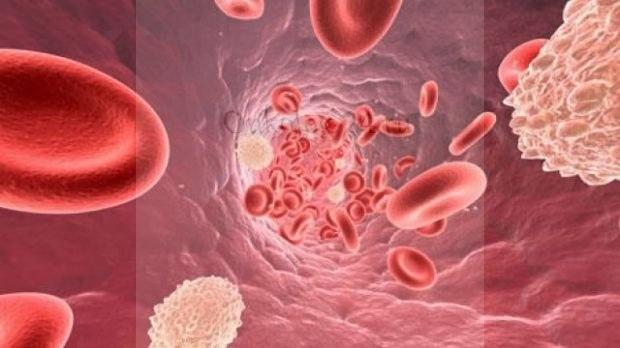 Miyeloproliferativnyye zabolevaniya