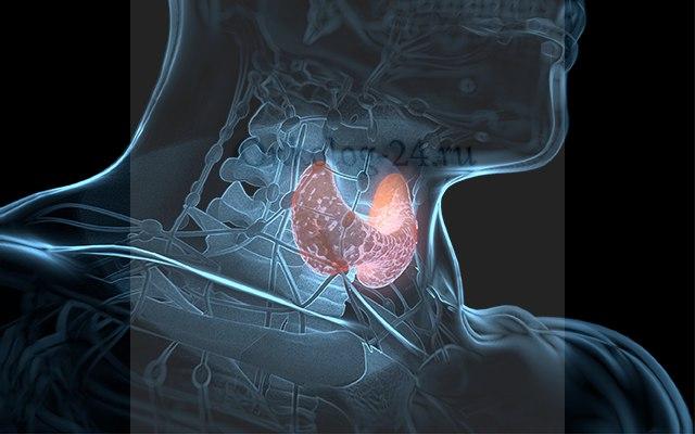 Tireotropnyy gormon