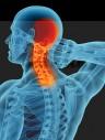 Рак головы и шеи
